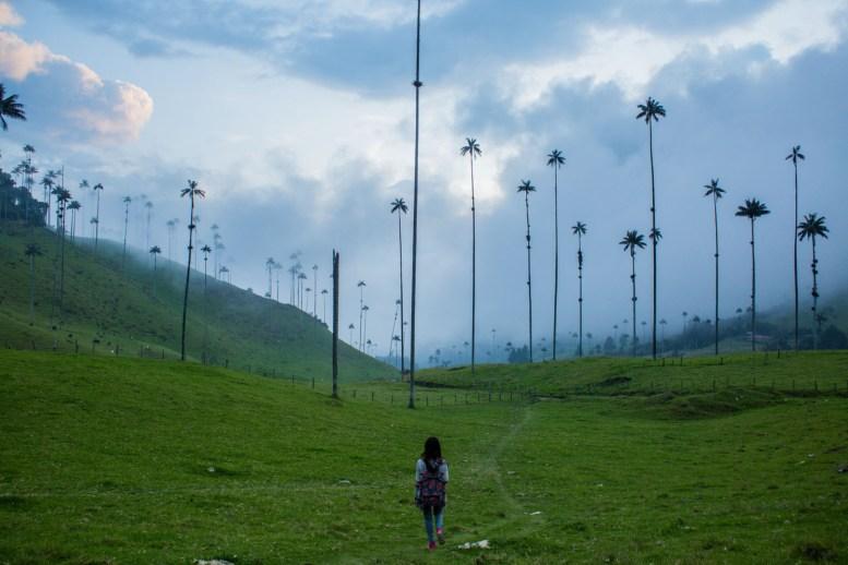 Valle de cocora, colombia, nomadarte, vanlife