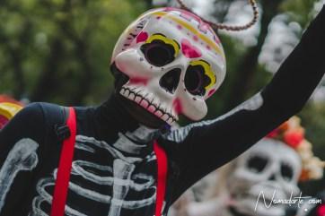 dia de muertos cdmx-169