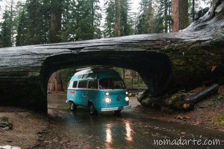 parque nacional sequoia, national park sequoia-209