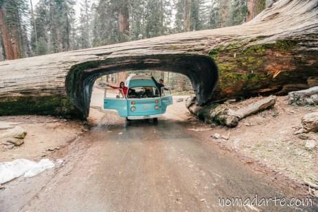 parque nacional sequoia, national park sequoia-70