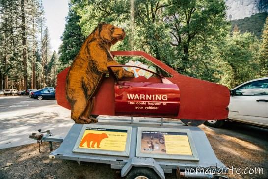 Parque Nacional Yosemite nomadarte vanlife-171