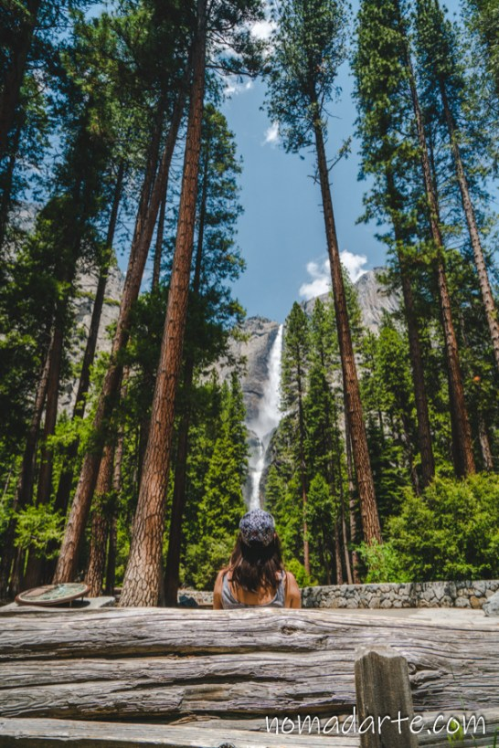 Parque Nacional Yosemite nomadarte vanlife-219