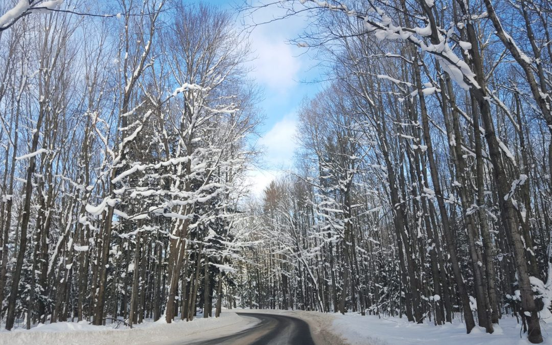 Ten Great Things to Do in Michigan in Winter