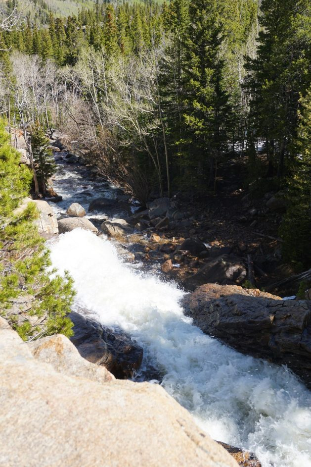 View from the top of Alberta Falls