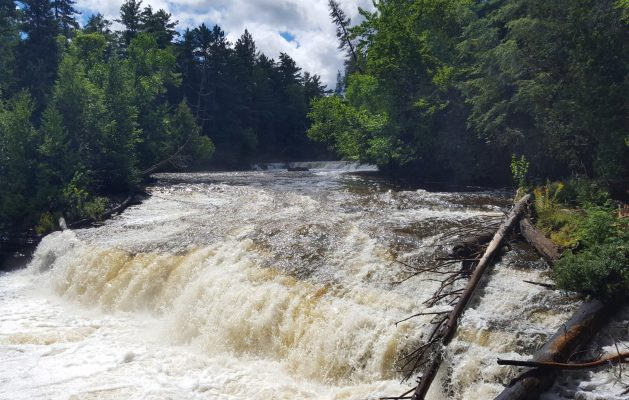 Tahquamenon Falls in Michigan's Upper Peninsula