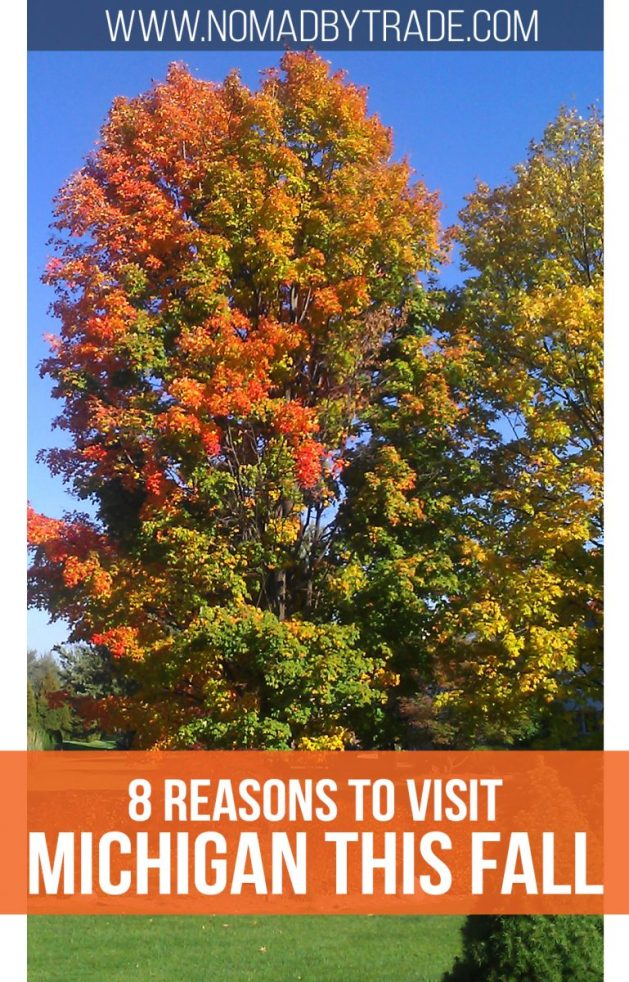 Colorful fall tree with text overlay