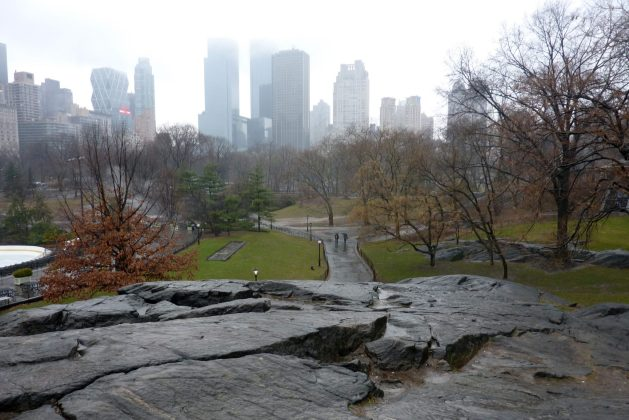 Misty day in Central Park - traveling alone for business