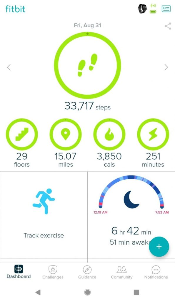 Fitbit screenshot showing stats