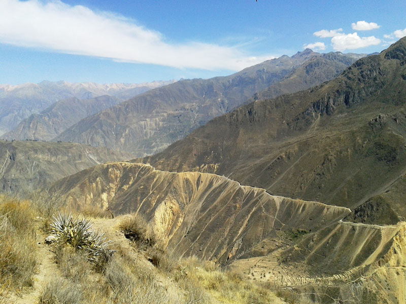 Photo of Colca Canyon, one of the top things to do in Peru