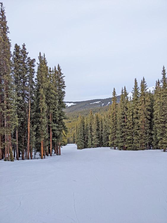 Easy, winding run at Ski Cooper