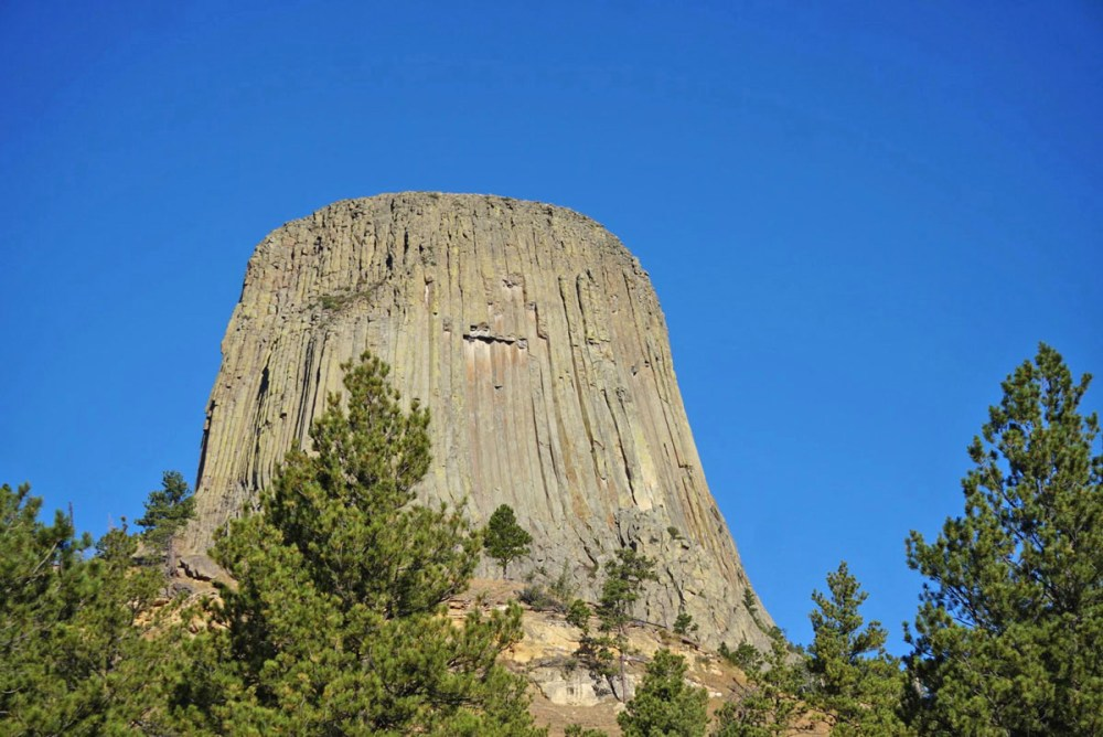 Devils Tower looming above trees