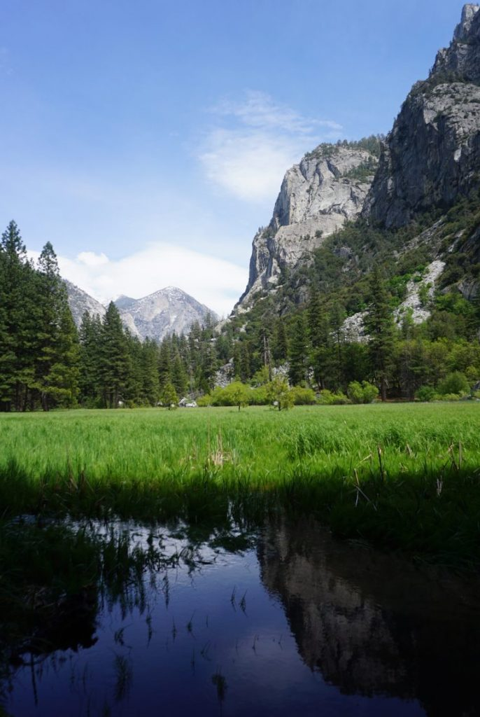 Flooded meadow surrounded by cliffs in Kings Canyon National Park