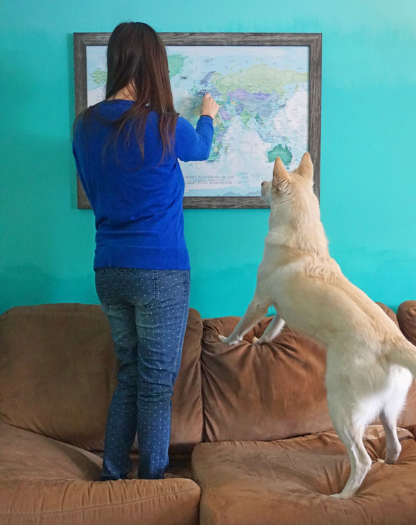 Woman and dog looking at a customized travel map on the wall