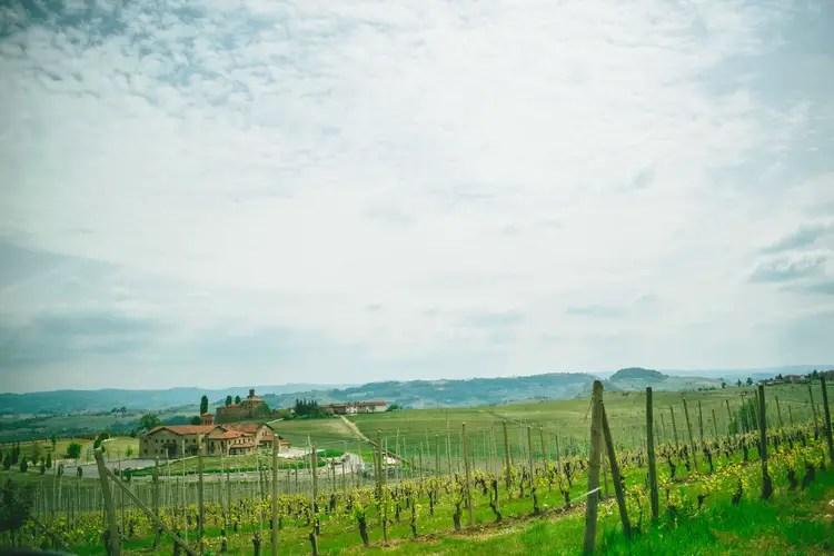 Winery in Italy's Piedmont region