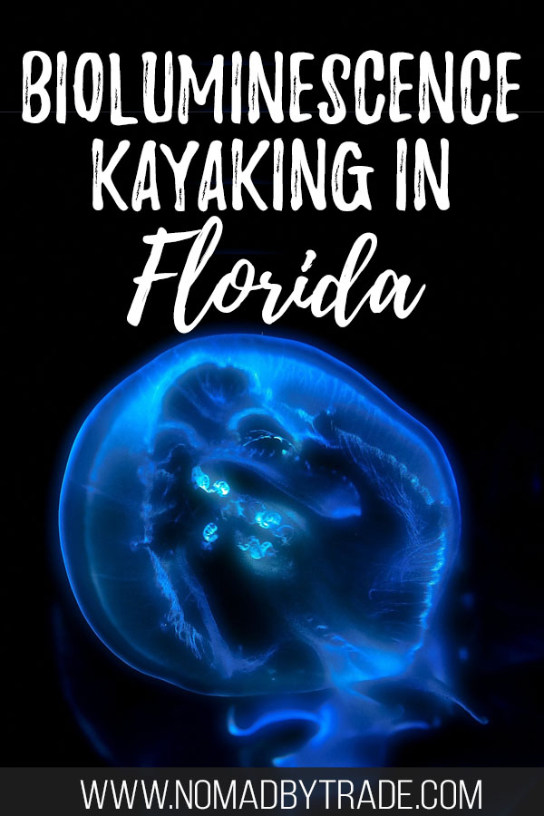 """Bioluminescent comb jelly with text overlay reading """"Bioluminescence kayaking in Florida"""""""