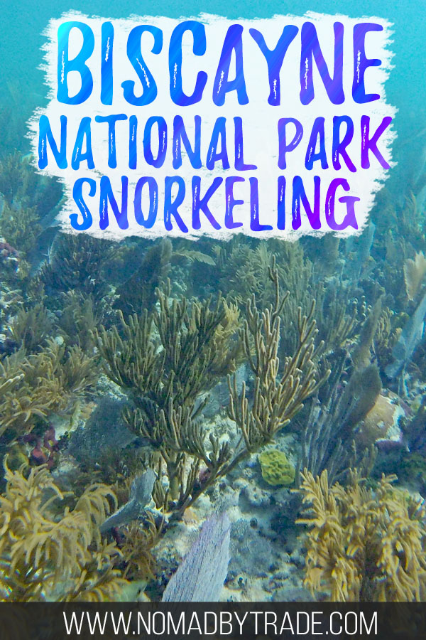 "Colorful coral reef with text overlay reading ""Biscayne National Park snorkeling"""