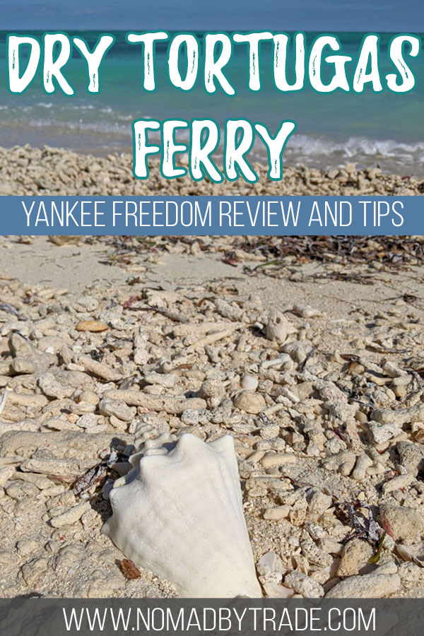 """Large seashell on a beach with text overlay reading """"Dry Tortugas ferry - Yankee Freedom review and tips"""""""