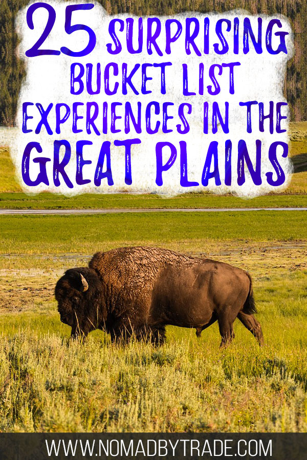 "Buffalo roaming in grass fields with text overlay reading ""25 surprising bucket list experiences in the Great Plains"""
