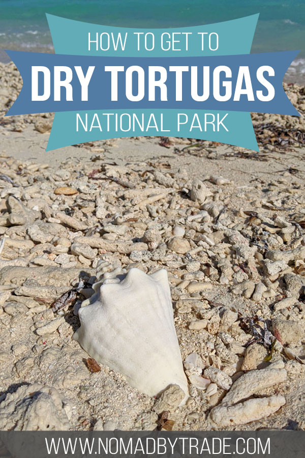 """Large seashell on a beach with text overlay reading """"how to get to Dry Tortugas National Park"""""""