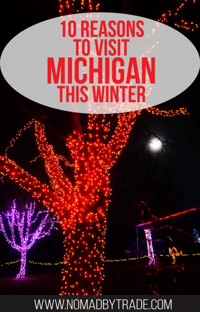 "Christmas lights at the Detroit Zoo with text overlay reading ""10 reasons to visit Michigan this winter"""