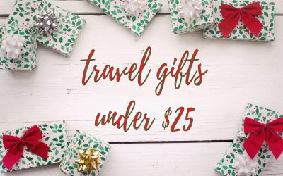 25 Insanely Useful Travel Gifts Under $25