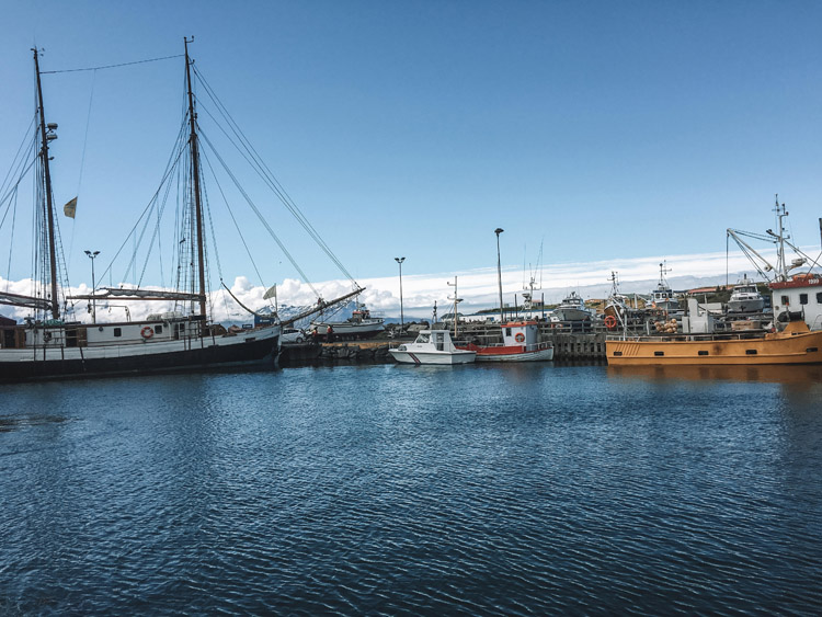 Whale watching boats in Iceland