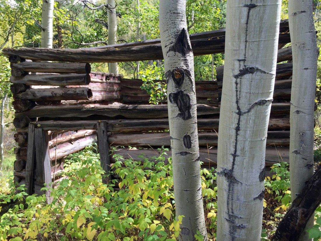 Snowmass' Spiral Point Hike Will Take Your Breath Away