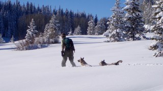 Showshoeing Trails Near Denver