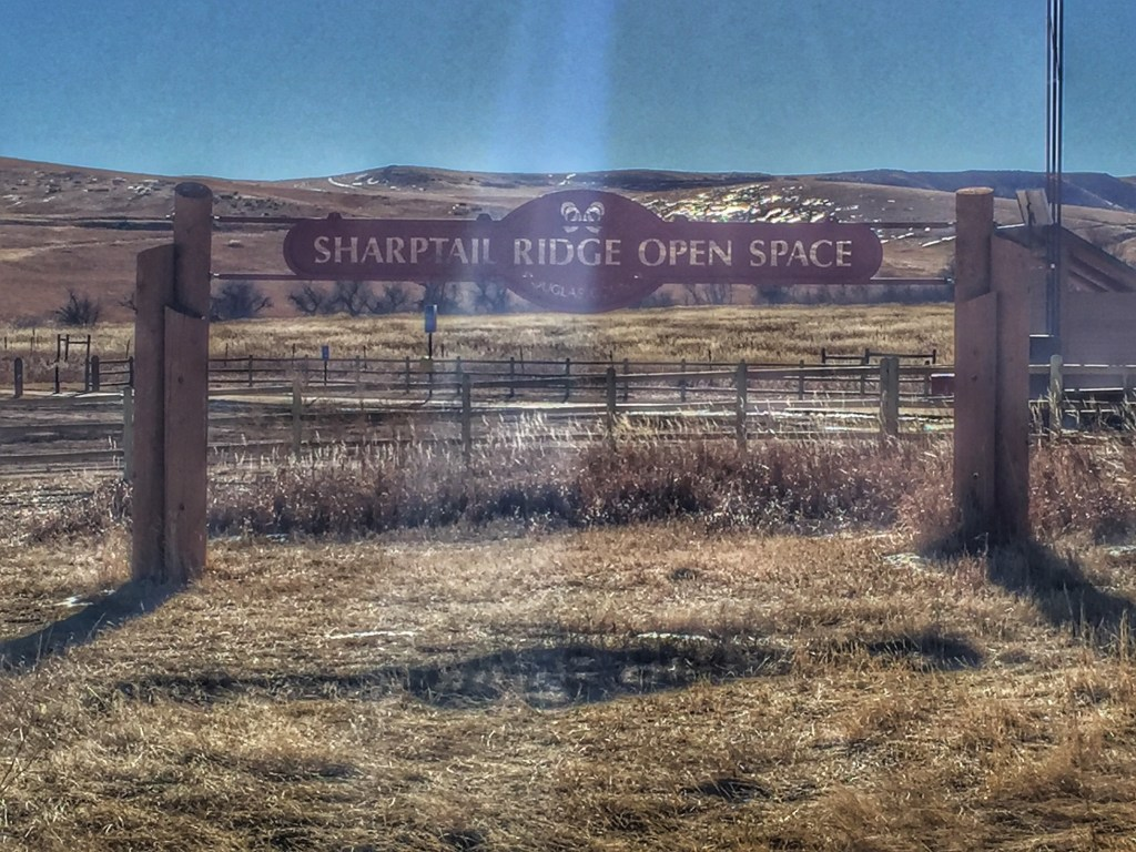 Sharptail Ridge Open Space Trailhead