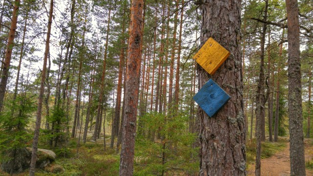 The trails in Kurjenrahka National Park are marked every few metres.