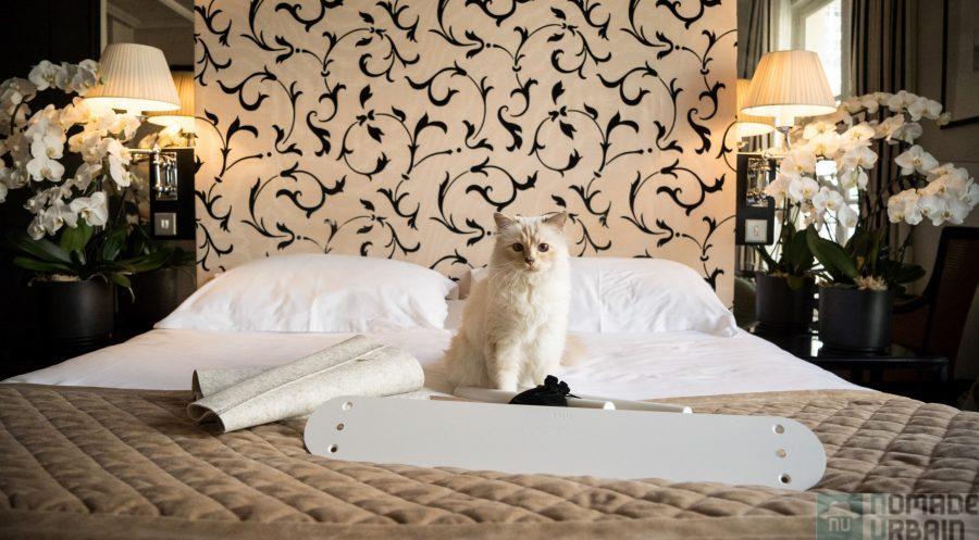 LucyBalu x Choupette, le chat de Karl Lagerfeld se fait designer