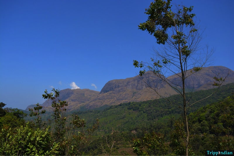 View of Anamudi peak, the highest peak in the Nilgiri region. It is one of the important things to see in Munnar, which is amongst the most popular weekend getaways from Bangalore