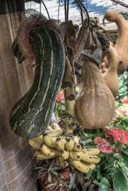 Madeira Vegetables
