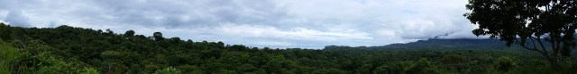 The view from the hills above Ojochal. Jungle with a view of the Pacific Ocean!