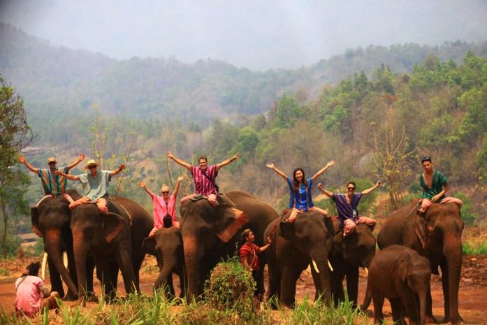 thailand, chiang mai, patara elephant farm, elephant riding