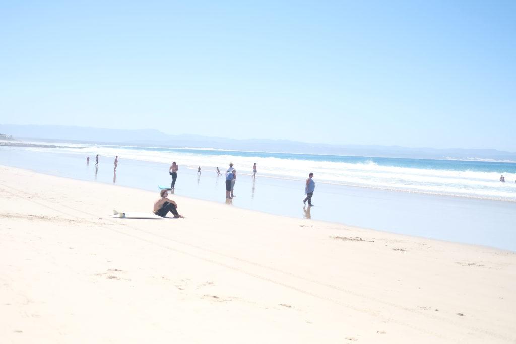 Dolphin's Beach