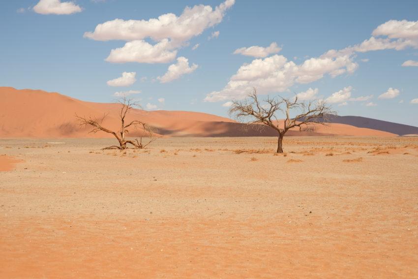 Sossusvlei - Road trip por Namibia