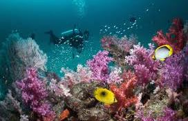 Adventure sports in andaman