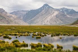 Places to visit in Ladakh Suru Valley Trekking in Ladakh