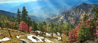 Tourist Places to Visit in Almora - Mohan Joshi Park