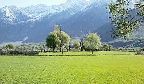 Tourist places to visit in Kargil, Things to do in Kargil - Suru valley