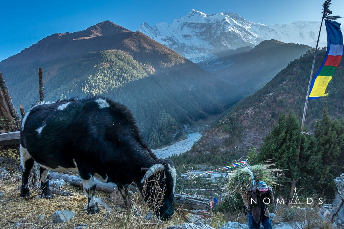 Nepal Tourist Guide Map