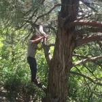 rock climbing, kids, family travel, Colorado, Glenwood Springs