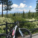 Downhill Biking, Peter Skene Ogden Mountain Biking Loop OR