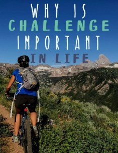 why challenge is important in life