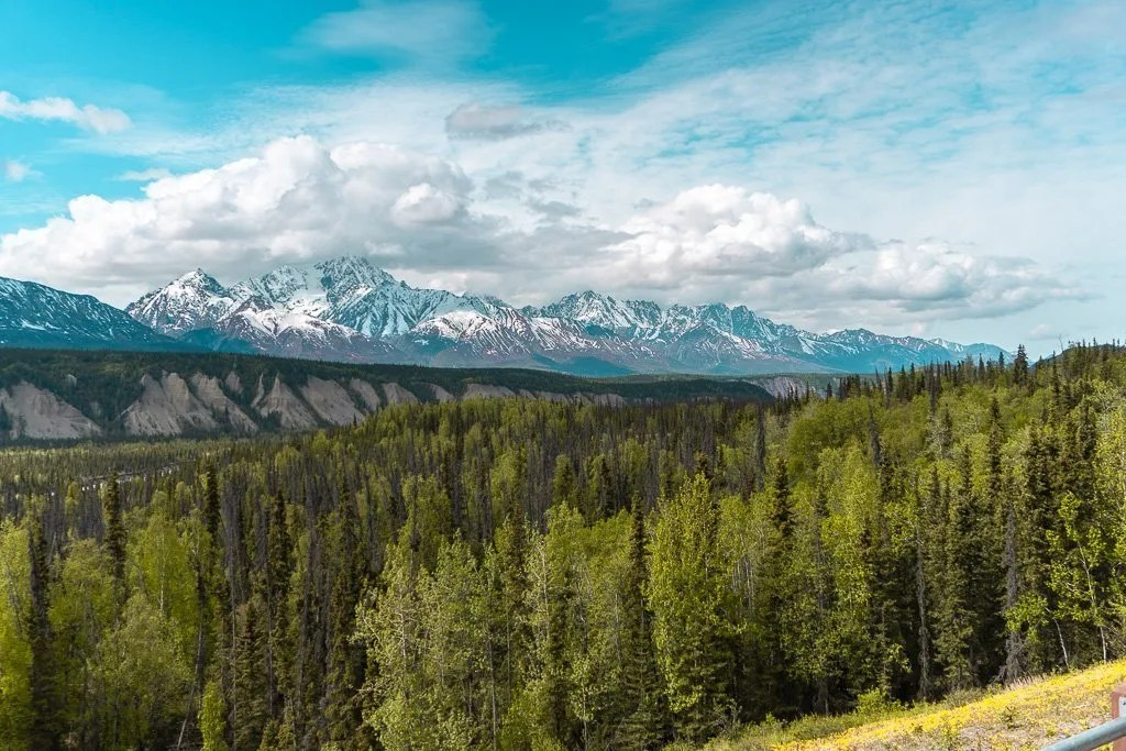 Views on the Alaska Highway