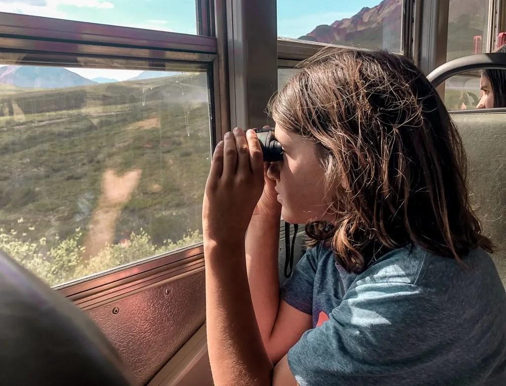Buses, Denali National Park, Hiking and Camping, Alaska