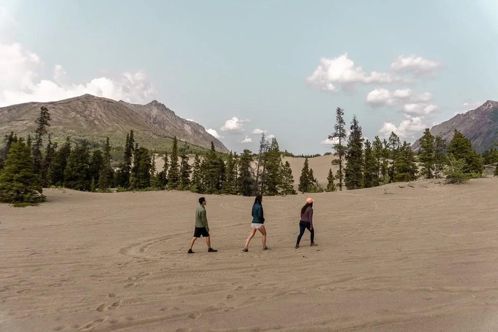 Carcross Desert, Golden Circle, Yukon