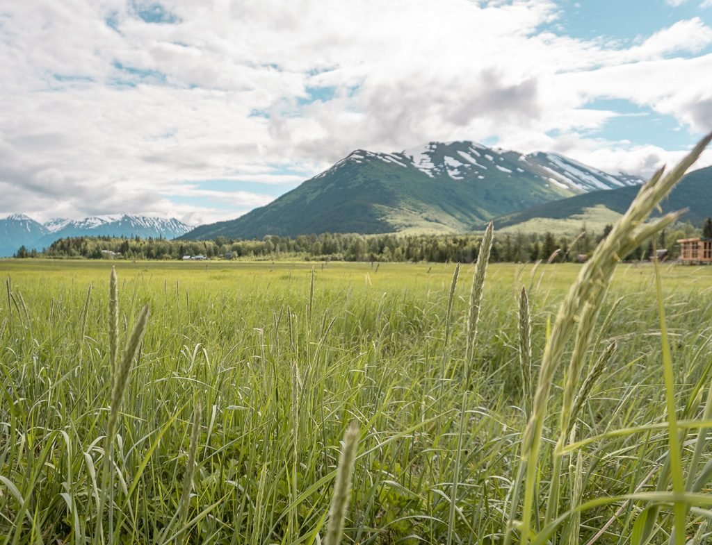 Hope, things to do Kenai Peninsula, Alaska Adventure destination
