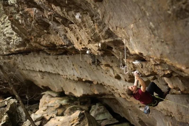 Climbing Cowler, Arkansas